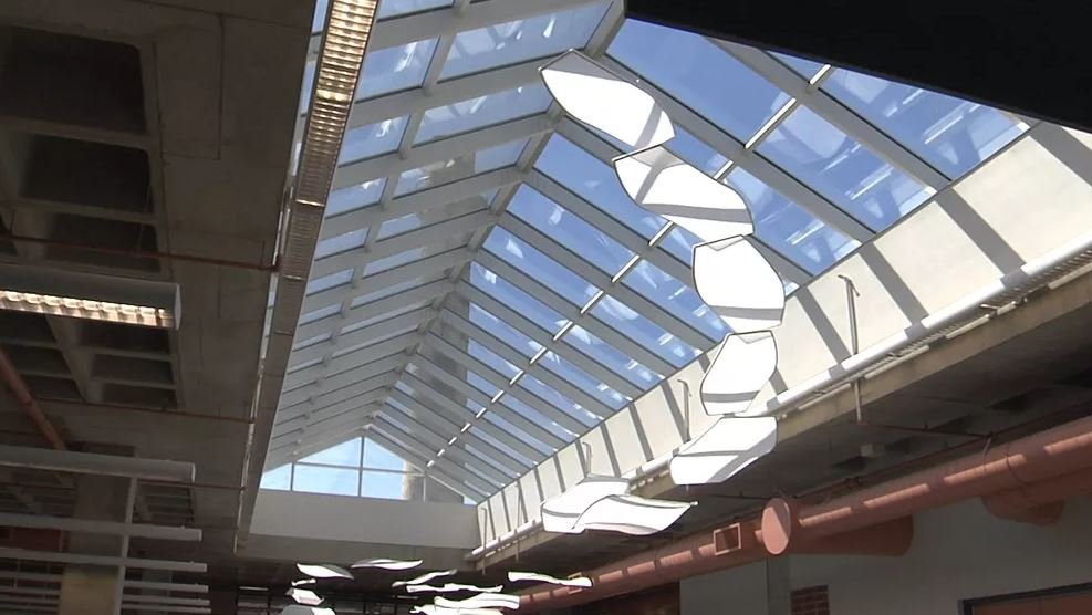 New Skylight Unveiled at Blasco Library